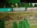003-bnsf_freight_pine_trees.jpg